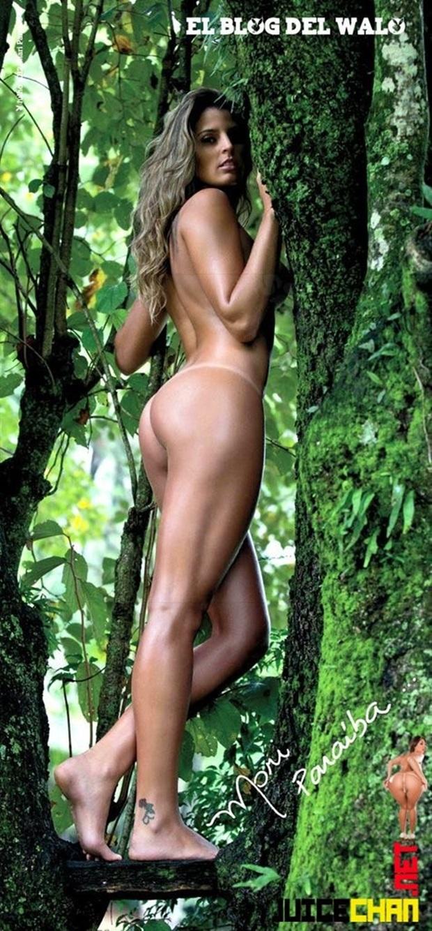 Playboy Julho De 2012 Mari Paraiba